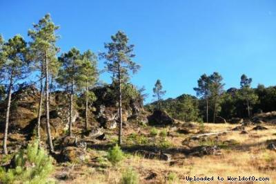 Orienteering in Gouveia